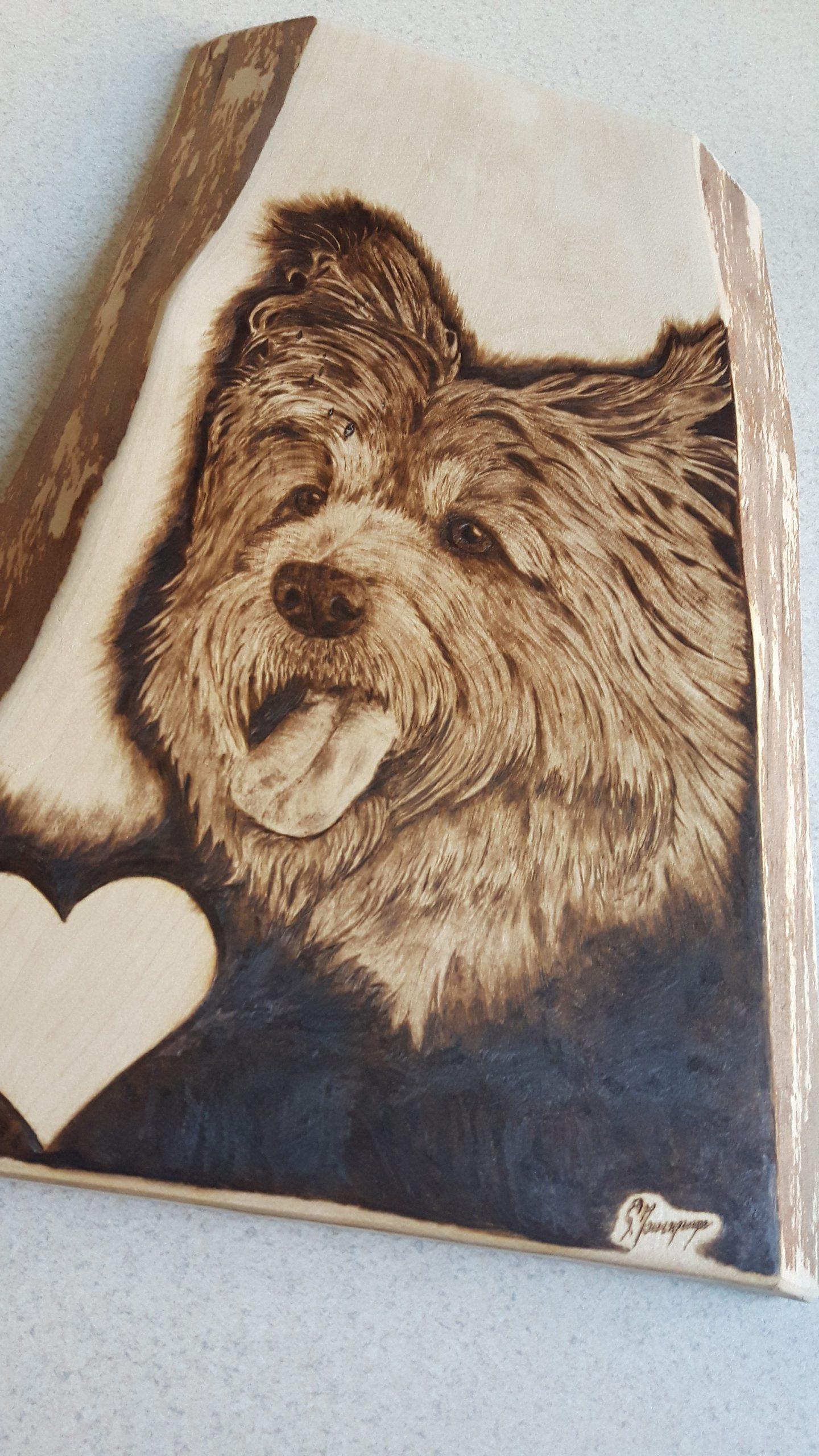 portret psa wypalanie w drewnie, sylwia, pirografia, janczyszyn, pyrography, handmade, rękodzieło, pomysł na prezent,