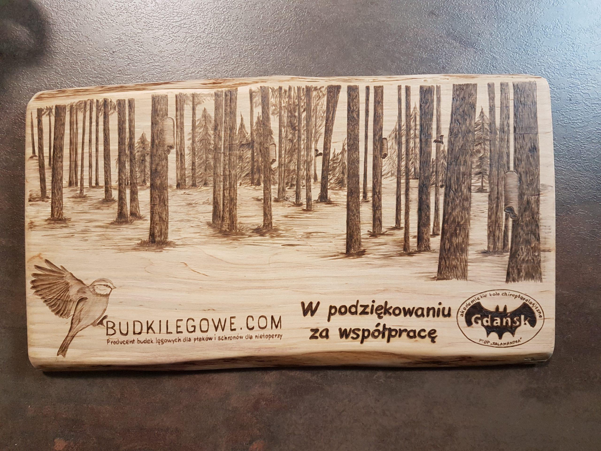wypalanie w drewnie, sylwia, pirografia, janczyszyn, pyrography, handmade, rękodzieło, pomysł na prezent, budki lęgowe, las