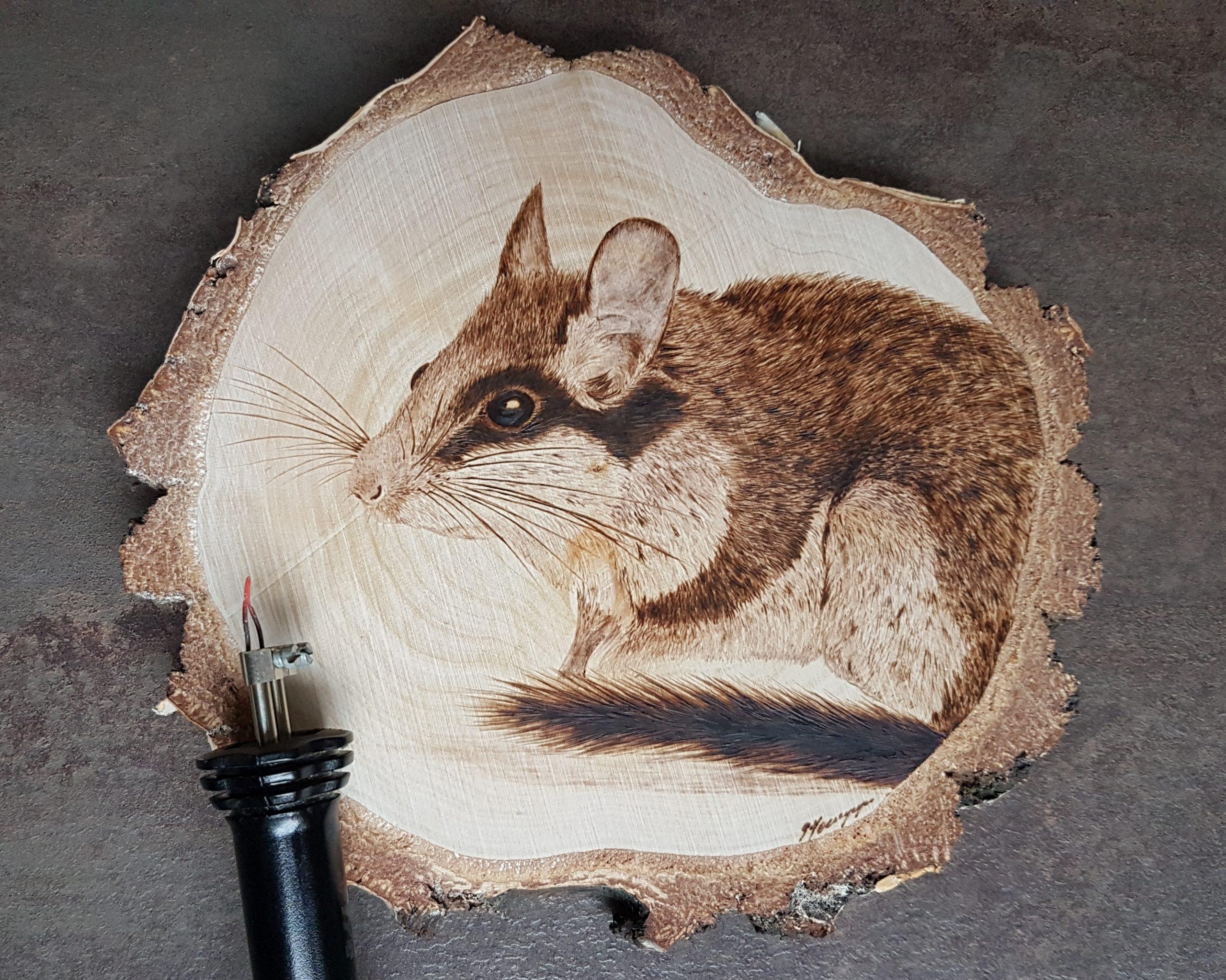 wypalanie w drewnie, sylwia, pirografia, janczyszyn, pyrography, handmade, rękodzieło, pomysł na prezent, żołędnica