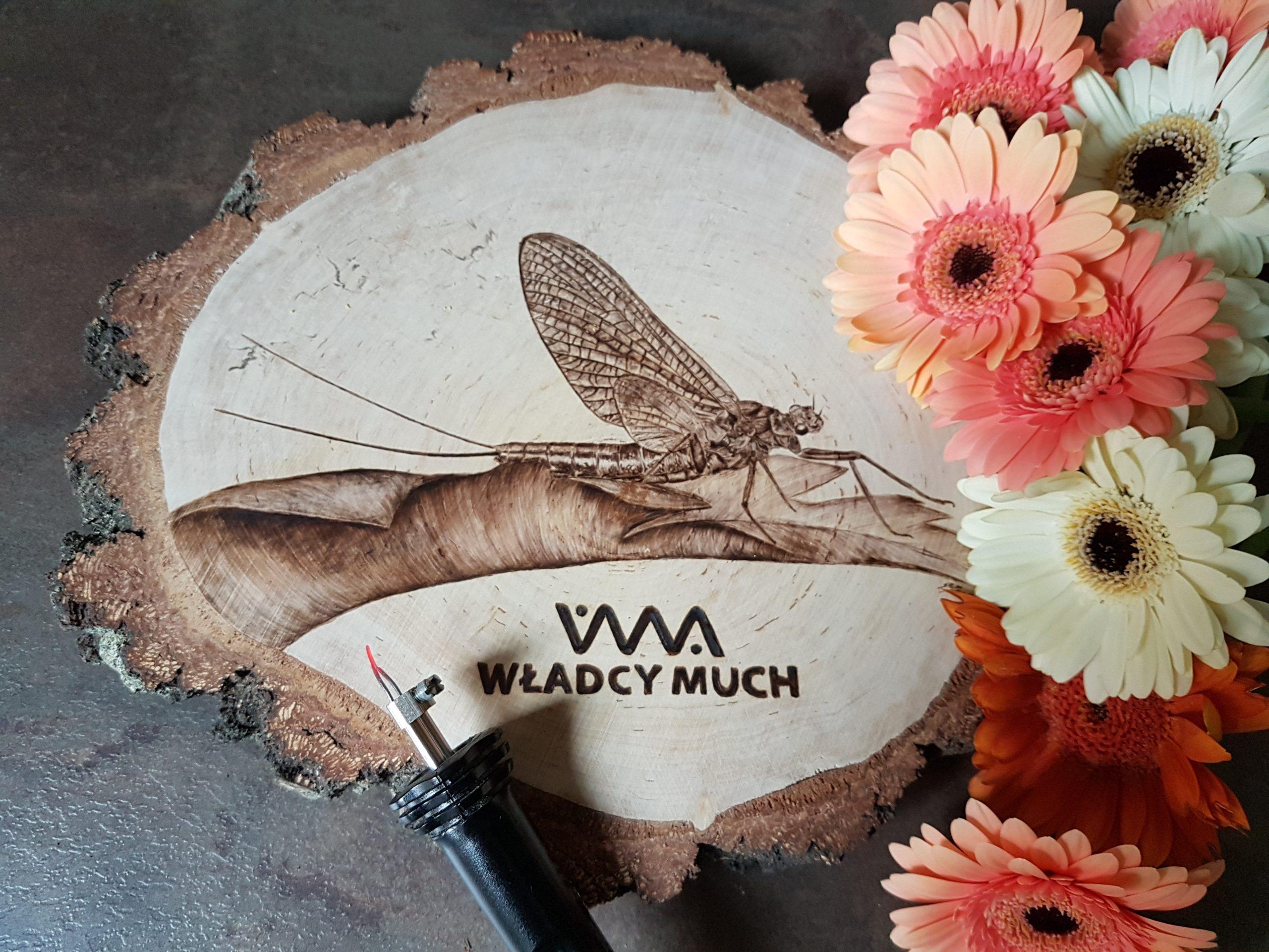 wypalanie w drewnie, sylwia, pirografia, janczyszyn, pyrography, handmade, rękodzieło, pomysł na prezent, owady
