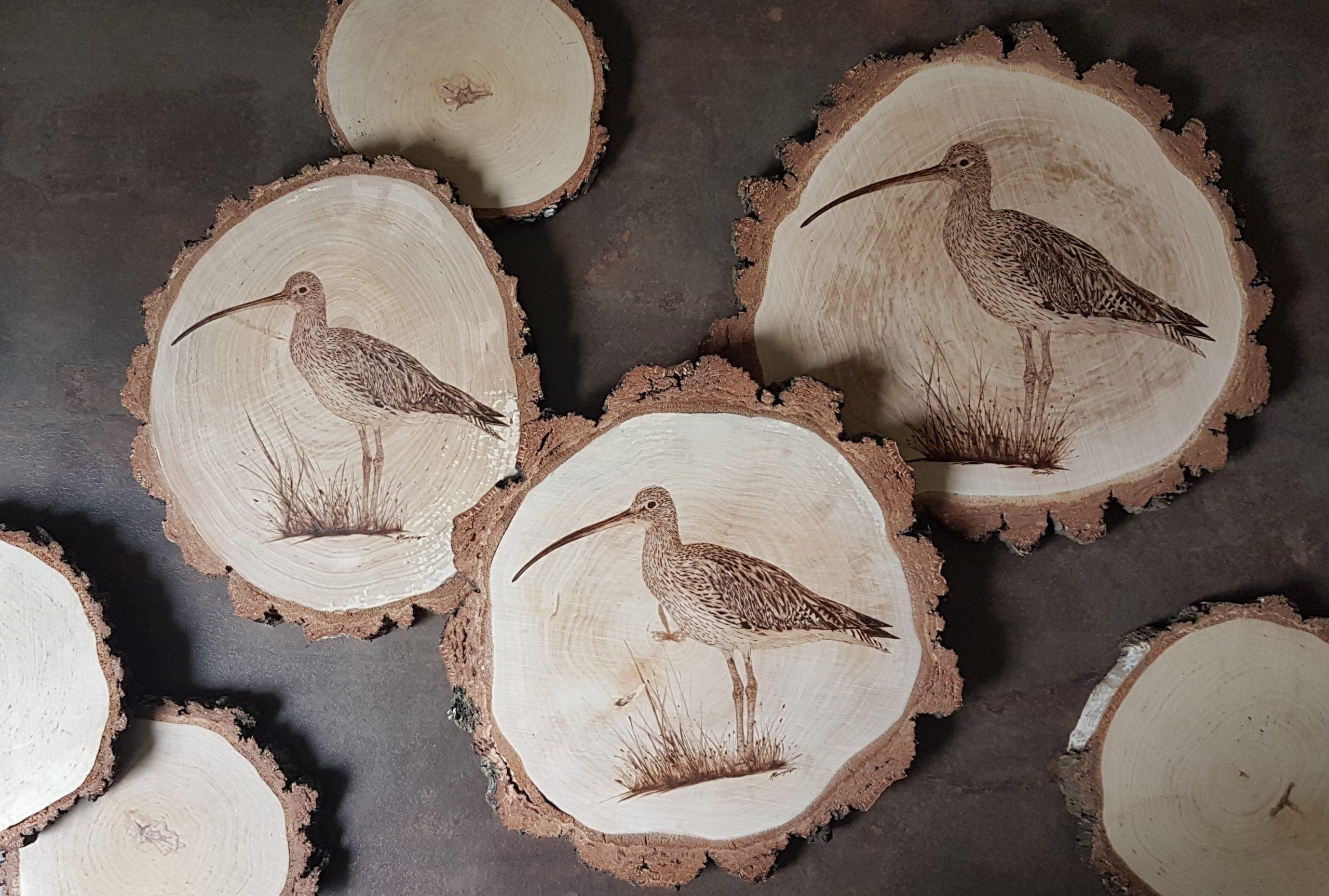 wypalanie w drewnie, sylwia, pirografia, janczyszyn, pyrography, handmade, rękodzieło, pomysł na prezent, kulik wielki
