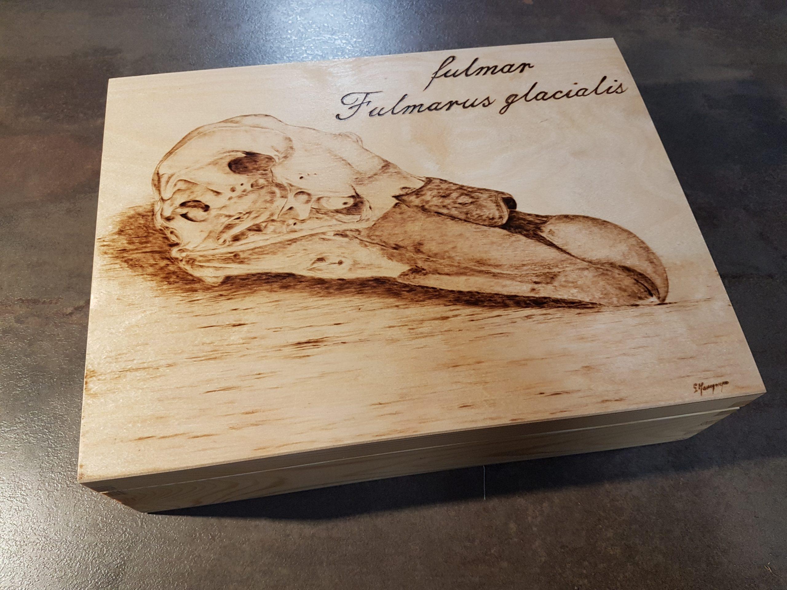 wypalanie w drewnie, sylwia, pirografia, janczyszyn, pyrography, handmade, rękodzieło, pomysł na prezent, pudełko, czaszka fulmara