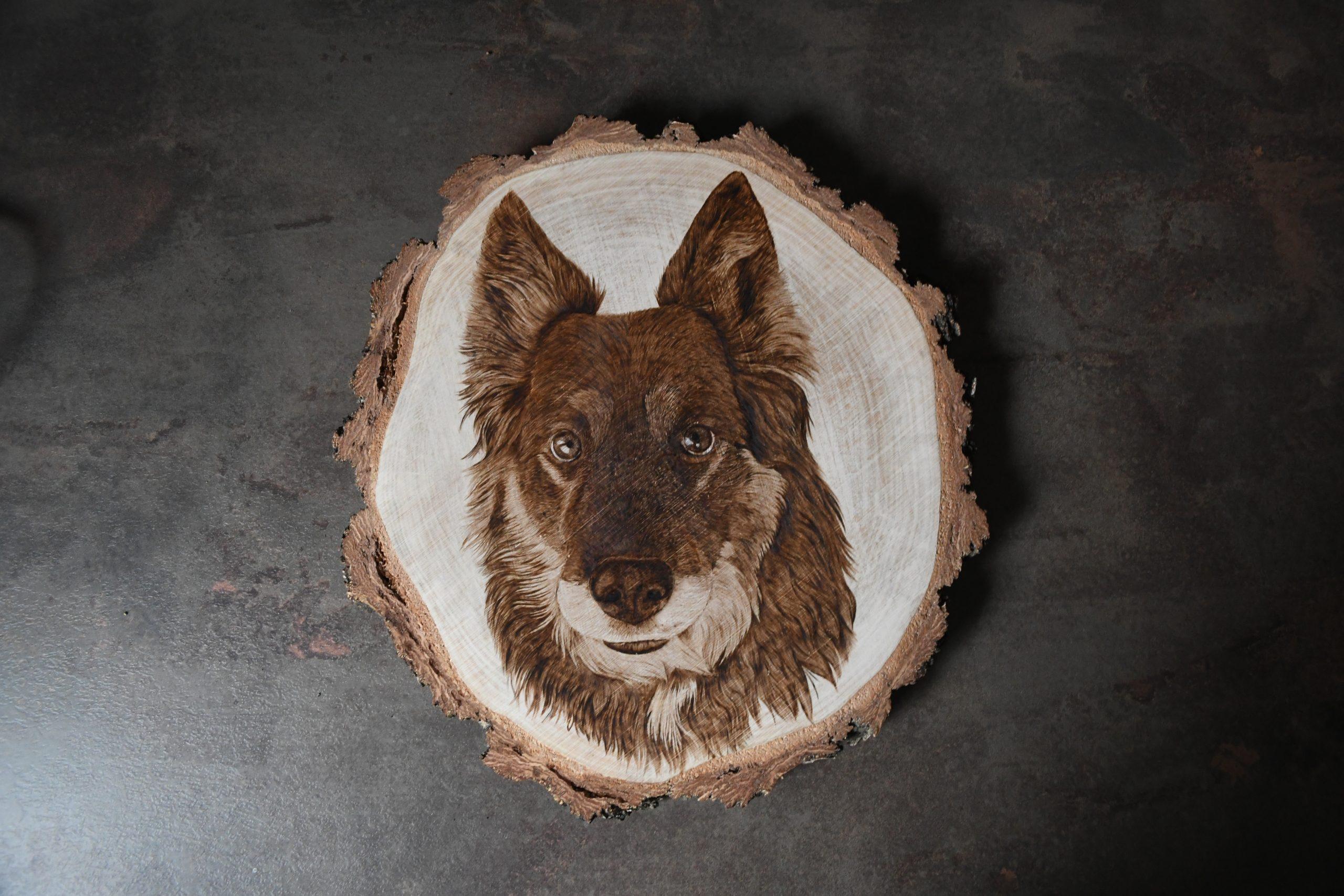 wypalanie w drewnie, sylwia, pirografia, janczyszyn, pyrography, handmade, rękodzieło, pomysł na prezent, portret psa, dog portrait
