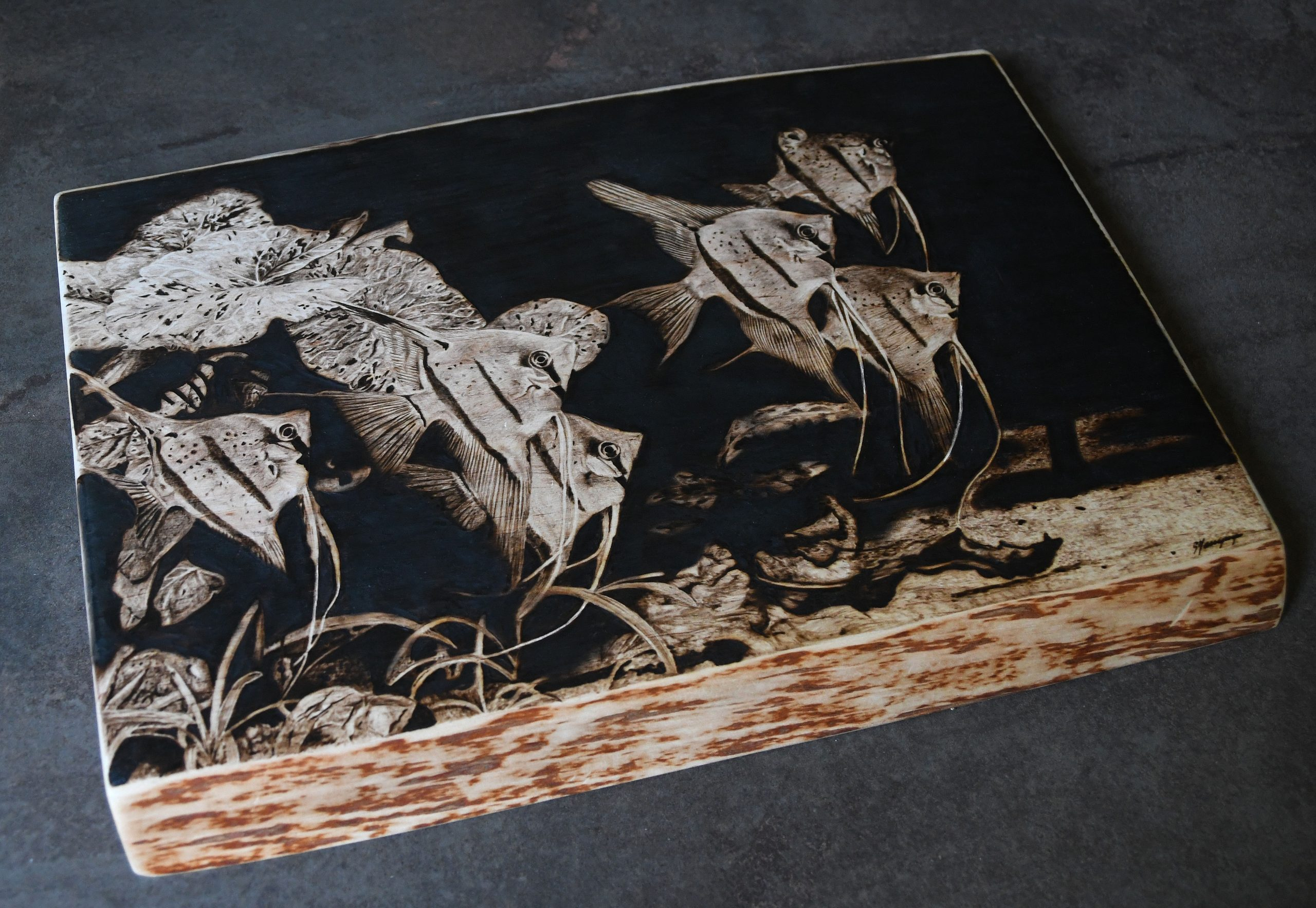 wypalanie w drewnie, sylwia, pirografia, janczyszyn, pyrography, handmade, rękodzieło, pomysł na prezent, zwierzęta, akwarystyka