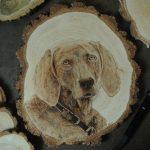 wypalanie w drewnie, sylwia, pirografia, janczyszyn, pyrography, handmade, rękodzieło, pomysł na prezent, portret psa, pamiątka