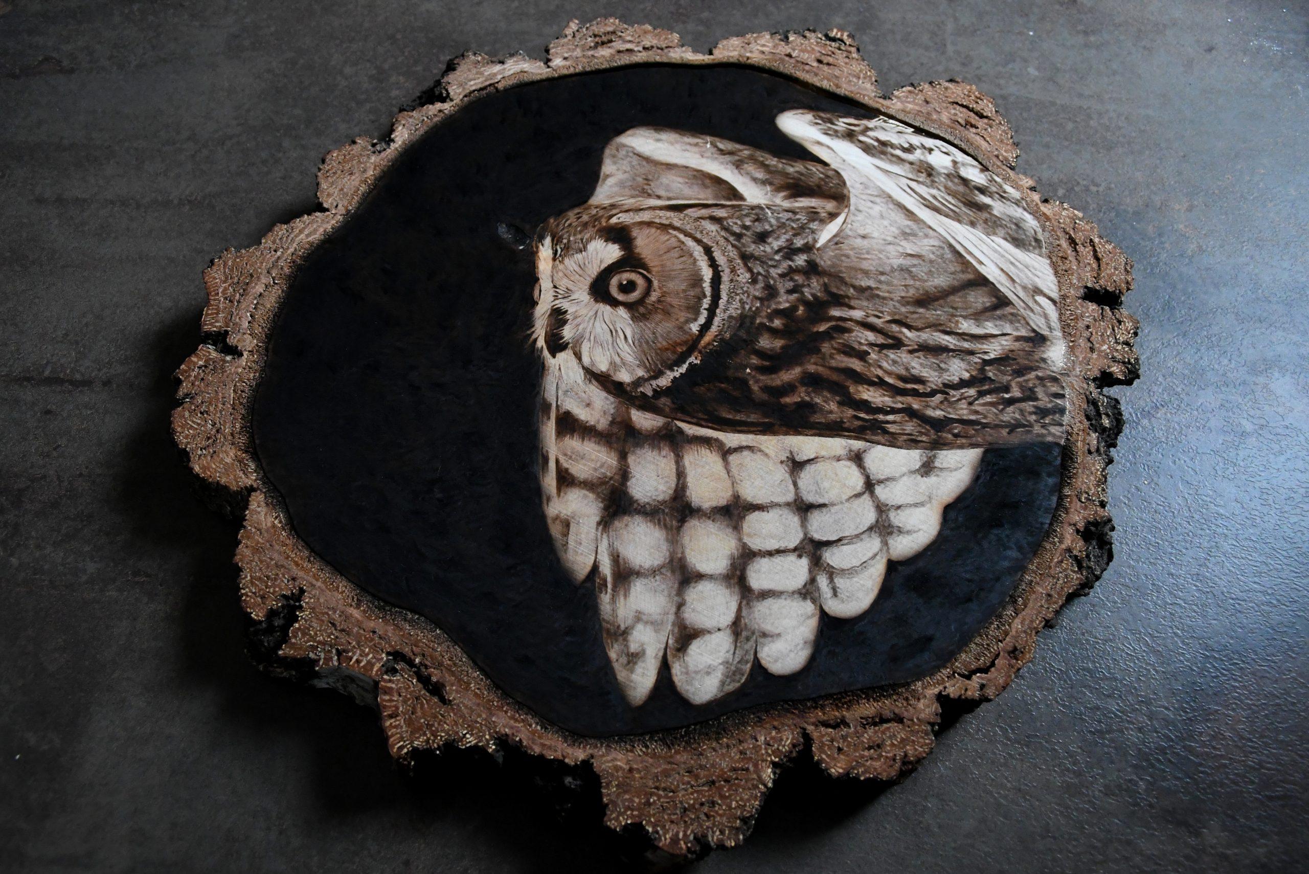 wypalanie w drewnie, sylwia, pirografia, janczyszyn, pyrography, handmade, rękodzieło, pomysł na prezent, sowa, na zamówienie