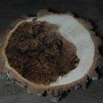 wypalanie w drewnie, sylwia, pirografia, janczyszyn, pyrography, handmade, rękodzieło, pomysł na prezent, żubr