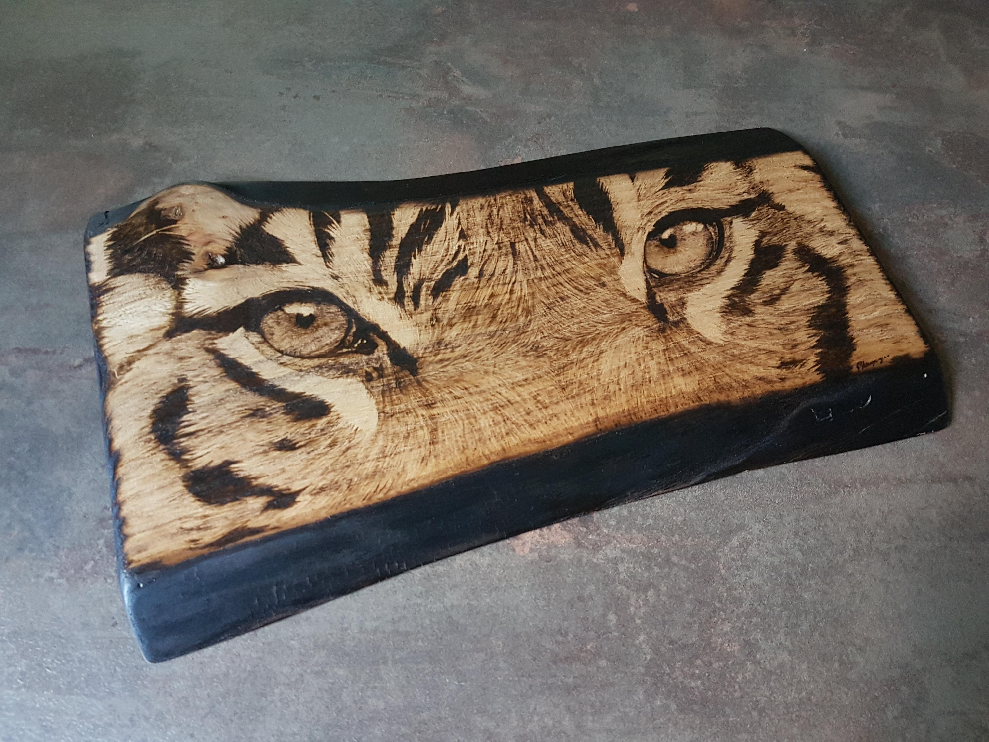 wypalanie w drewnie, sylwia, pirografia, janczyszyn, pyrography, handmade, rękodzieło, pomysł na prezent, oczy tygrysa
