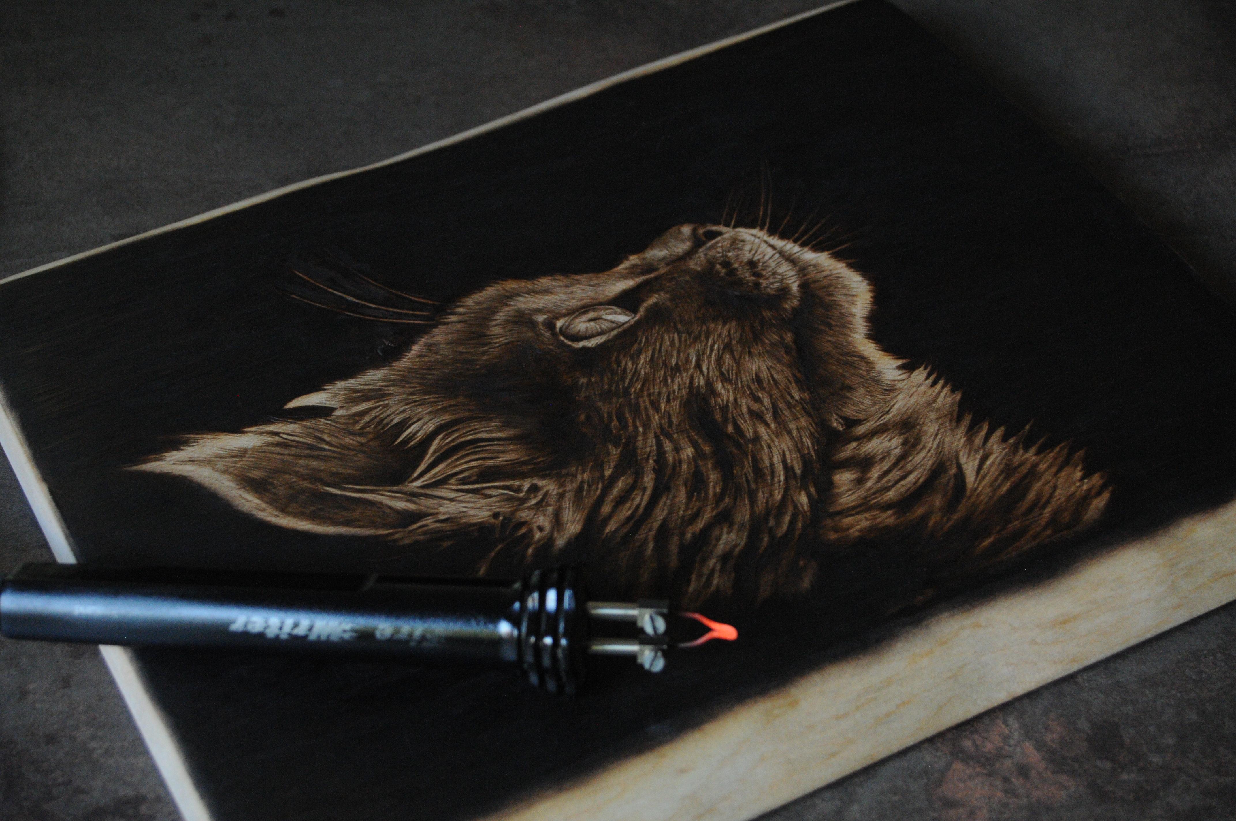 wypalanie w drewnie, sylwia, pirografia, janczyszyn, pyrography, handmade, rękodzieło, pomysł na prezent, portret kota