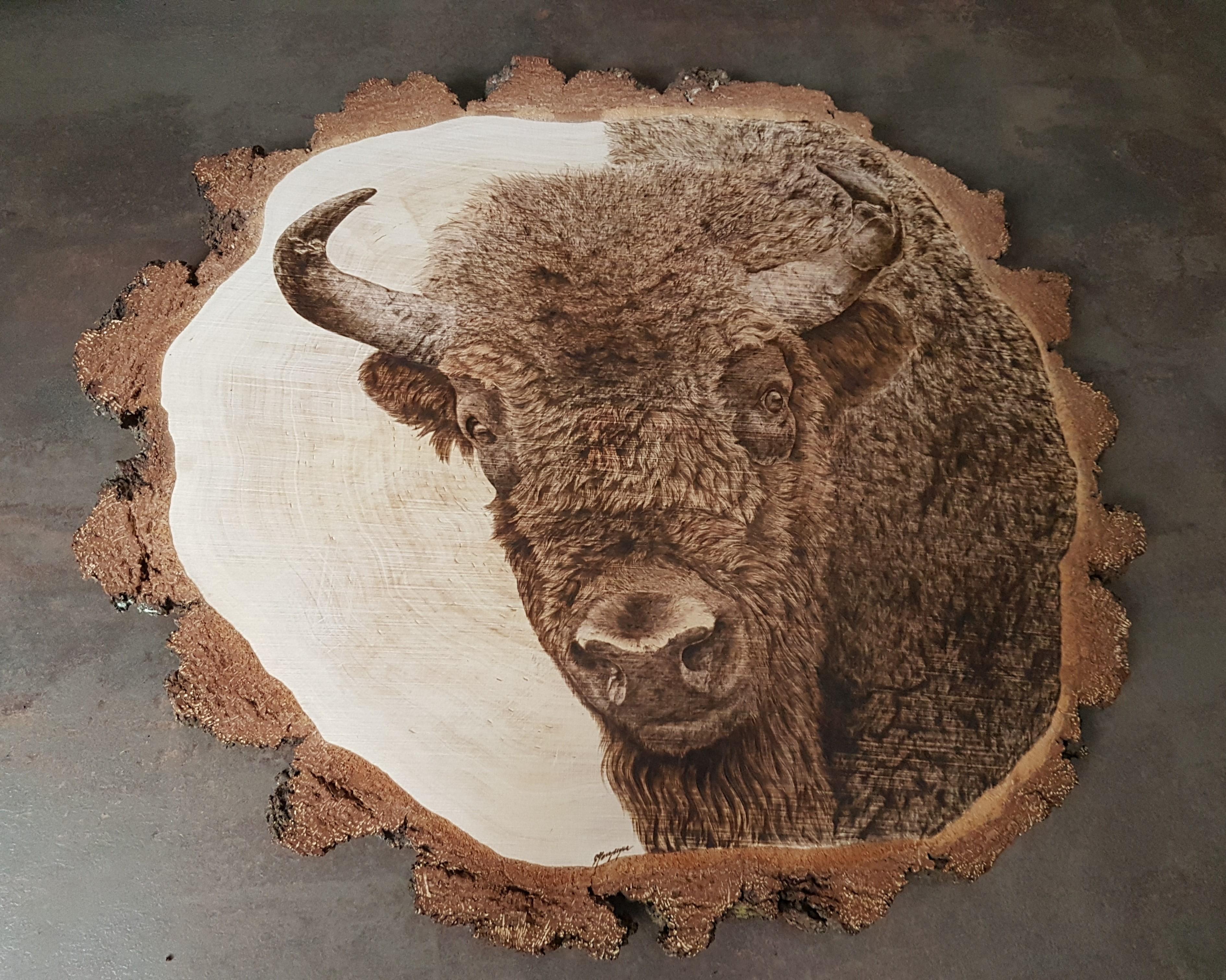 wypalanie w drewnie, pirografia, janczyszyn, pyrography, handmade, rękodzieło, pomysł na prezent, żubr