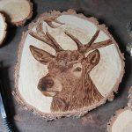 wypalanie w drewnie, sylwia, pirografia, janczyszyn, pyrography, handmade, rękodzieło, pomysł na prezent, jeleń